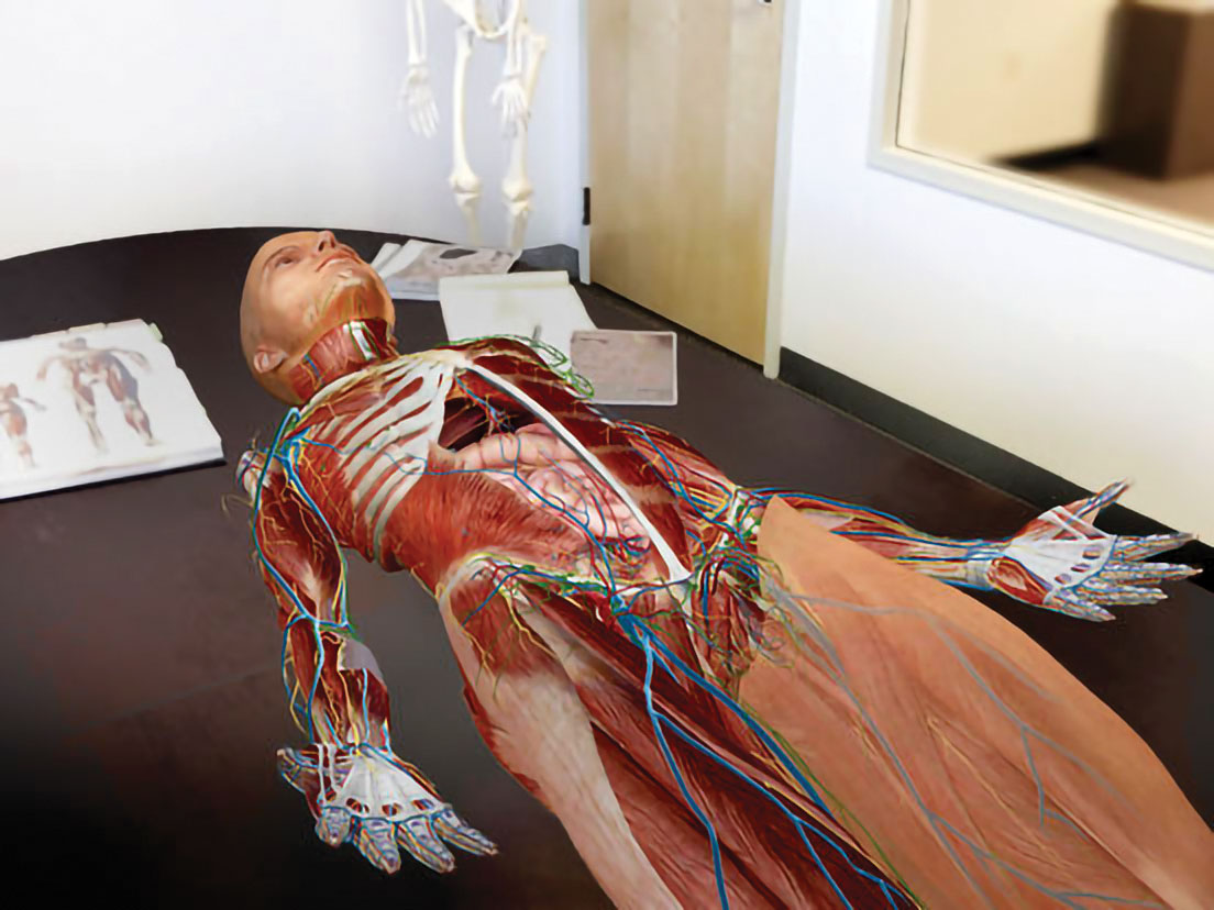 Research Study Human Anatomy 8th Edition Testbank Utilizing a Research Study Overview